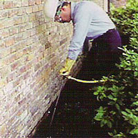 Termite Exterminator in the Bronx