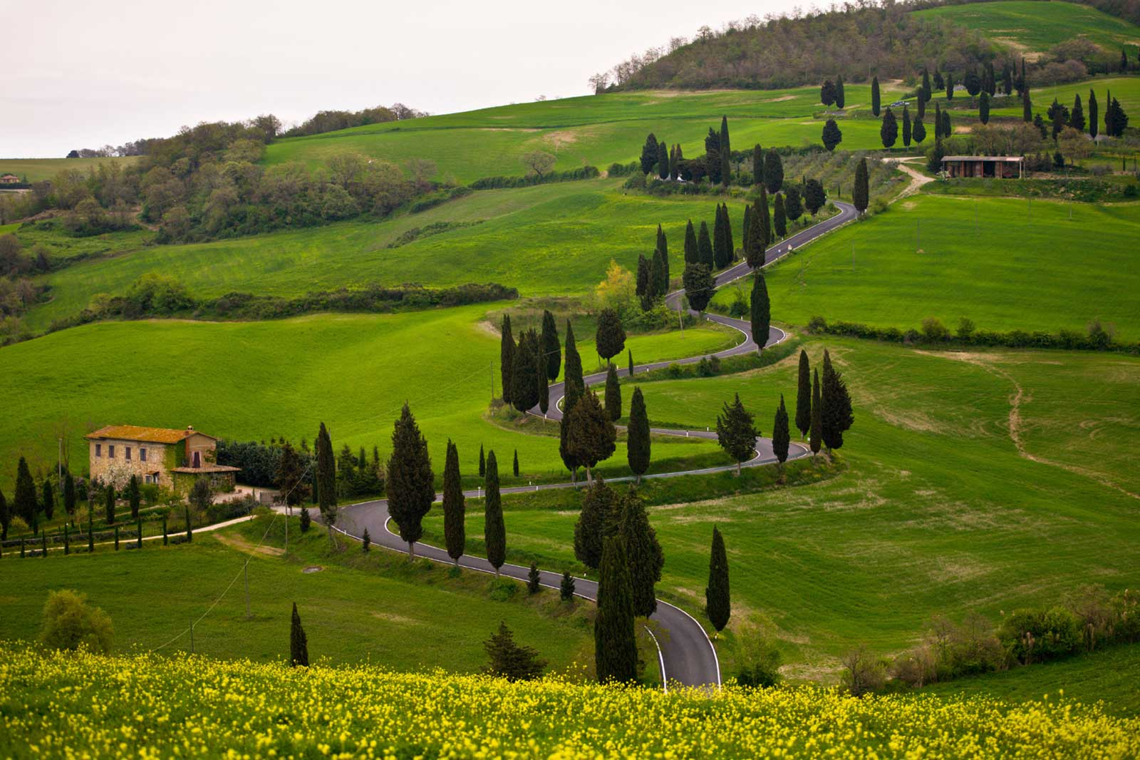 Florence Tuscany: MUST SEE TUSCANY AND FLORENCE 6 NIGHT PACKAGE